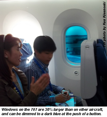 787 windows