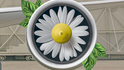 Daisy in jet engine