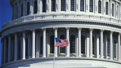 CapitolFlag410x232