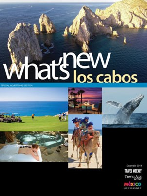 What's New Los Cabos