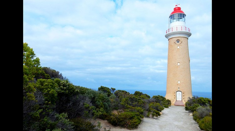 Located on KI's southwestern coast, the Cape Du Couedic lighthouse was built in 1909 and is one of several lighthouses on the island. More than 85 shipwrecks occurred around the island since 1847, drowning hundreds, most of whom were whalers and sealers.