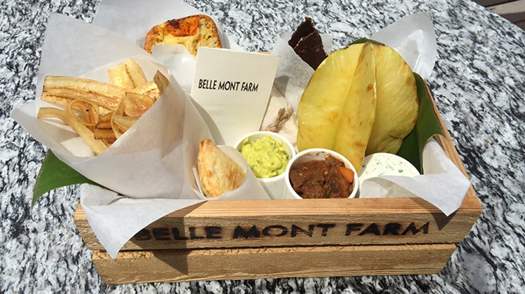 The lunch tray at Belle Mont Farm featured carambola fruit, farm bread, a coconut bar, chocolate peanut mint, banana dip, guacamole, goat cheese, lamb stew and vegetarian empanadas.