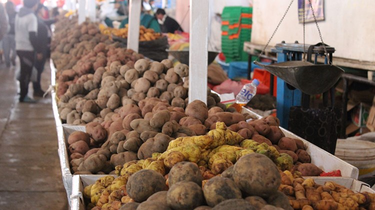 Potatoes at Cusco's San Pedro Market. The country grows thousands of potato varieties.
