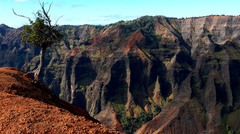 Kauai is the oldest of Hawaii's eight major islands, dating back more than 5 million years, and all that time to erode makes the Garden Isle home not only to the most white-sand beaches in the state but also the archipelago's only navigable rivers and jaw-dropping Waimea Canyon, pictured here. Photos posted March 29, 2015.