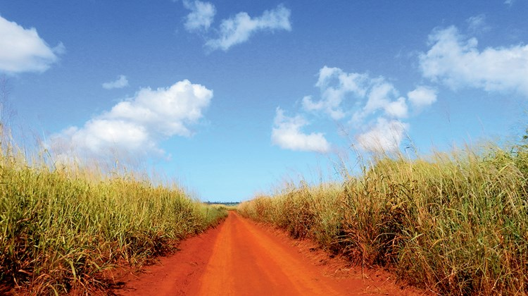 The at-times rugged drive out to Keahiakawelo travels through former pineapple fields and features the familiar red-dirt roads found across Lanai. Known formerly as the Pineapple Isle, Lanai spent much of the 20th century as a major Dole plantation.