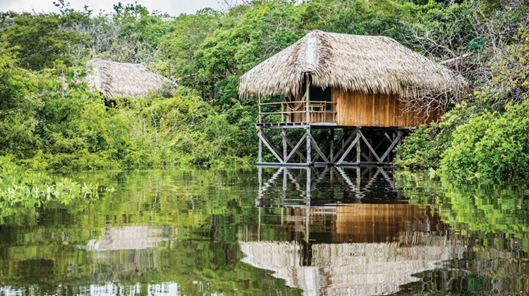 Not everyone headed to Brazil is thinking about the World Cup or the Olympics. Here are some highlights of a recent visit to two of the country's great outdoor lures: the Amazon and the Pantanal. Pictured here, a showpiece of ecotourism, the Juma Amazon Lodge's series of spacious cabanas are built on stilts with deep respect for natural resources and jungle wildlife.