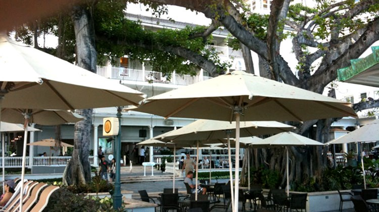 The Beach Bar at the Moana Surfrider resort in Waikiki is dominated by a huge banyan tree, and offers food, cocktails and, in the evenings, live Hawaiian music.