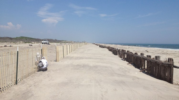 After about three hours, work on snow fencing is completed along a one-mile stretch of beach at Fort Tilden.