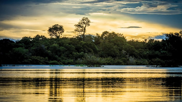 A sunset in the Pantanal.