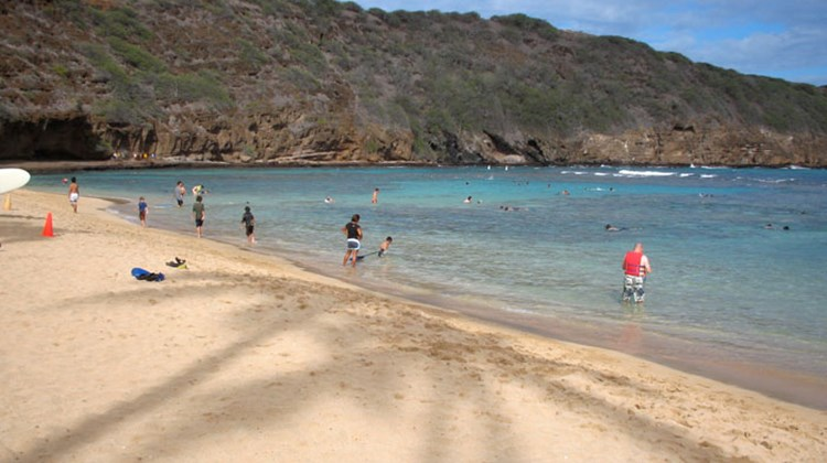 One of the most popular spots for snorkeling is Hanauma Bay, just outside Waikiki.