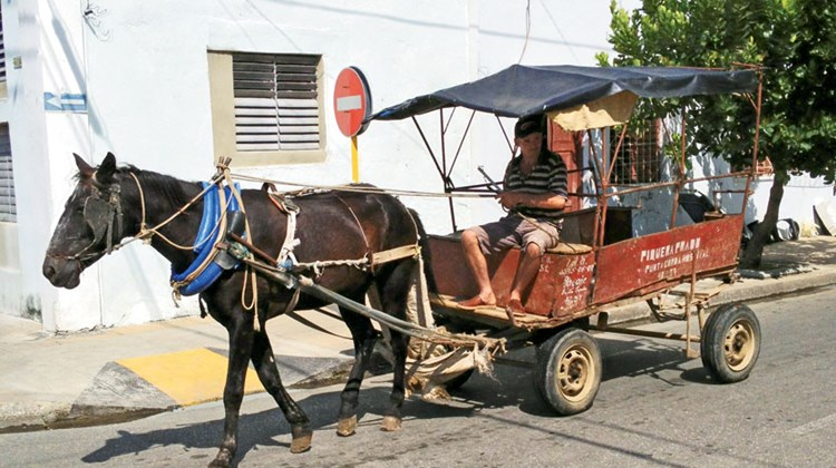 Transportation within Cuba takes many forms, including horse-drawn carriages that carry produce and passengers.