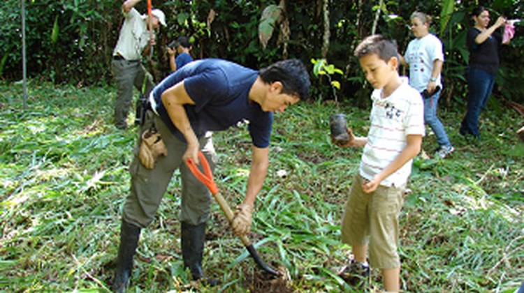 Rain Forest Aerial Trams Costa Rica Atlantic and Pacific parks recognized World Environment Day on June 5 by planting 200 trees each with the help of local government personnel, students and residents.
