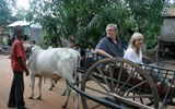 Ama co-founders Kristin Karst and Rudi Schreiner show passengers how to ride their oxcarts