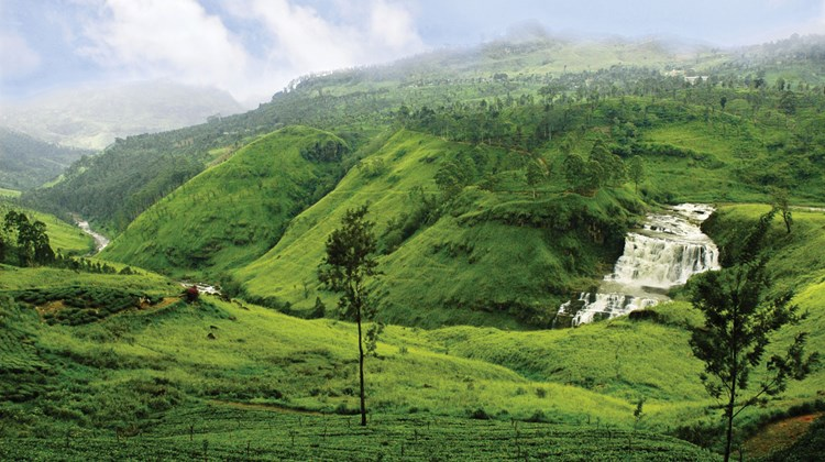 In the lush green hills of the Central Highlands, tea plantations roll on as far as the eye can see, giving the world some of its finest tea leaves. Sri Lanka, once called Ceylon, is the largest exporter of tea in the world