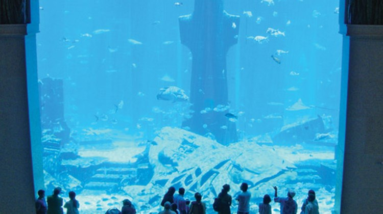 The aquarium at the new Atlantis resort in Dubai.