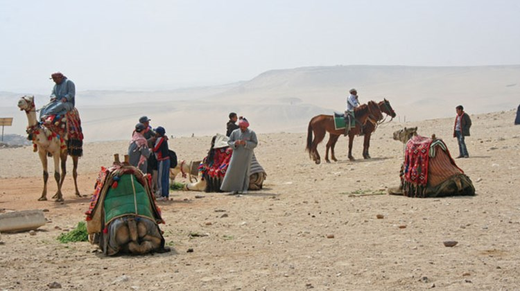 There's no business for the camel handlers and horse riders at the pyramids of Giza.