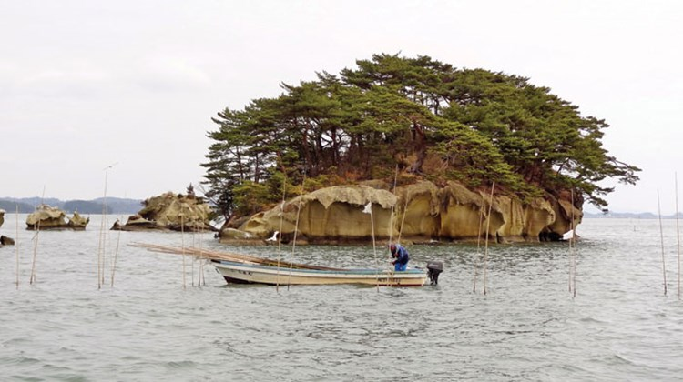 An island in Matsushima Bay, home to 260 islands.