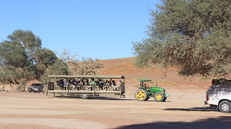 Tractor pull: Visitors without four-wheel vehicles are brought into the dunes of Sossusvlei on tractor-pulled trailers.