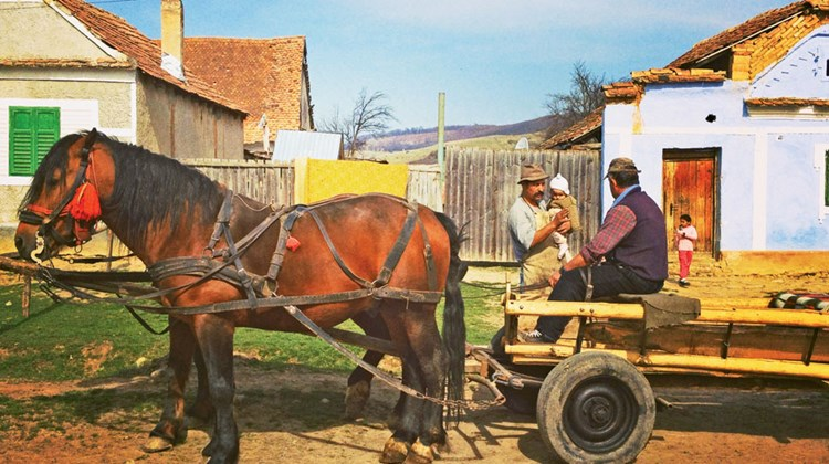 In the Transylvanian town of Viscri, people still live in a subsistence economy. TW photo by Michelle Baran