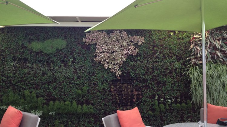 The Symphony's Living Wall, which began installation in September 2012.