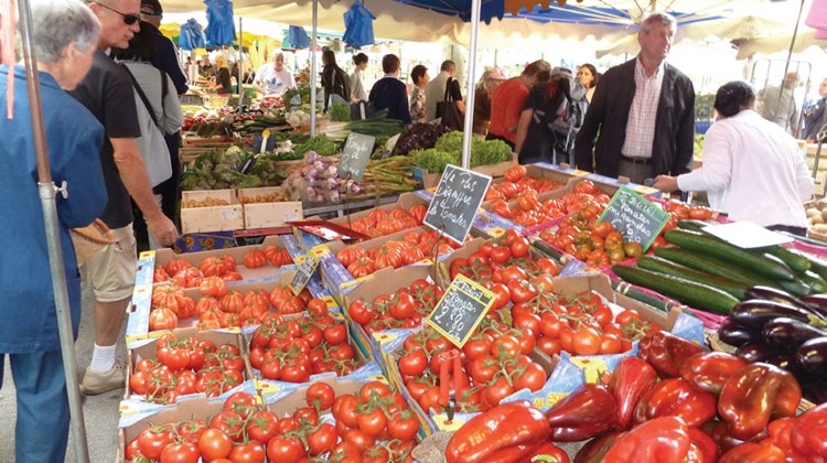 Freshly picked tomatoes and peppers side by side at the market.