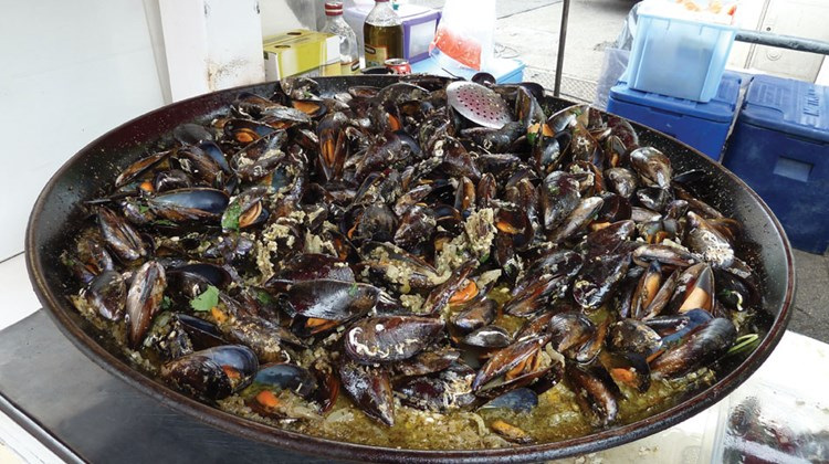 A mound of mussels