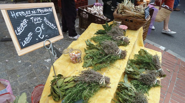 Bunches of fresh herbs for sale at the market.