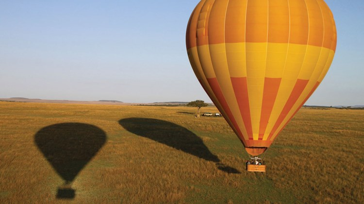 View from a hot-air balloon over the Maasai Mara. These balloons, operated by Balloon Safaris, Ltd., are about to land, just in time for and within a few yards of breakfast in the bush.