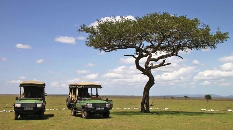 Typical four-wheel-drive vehicles used for game viewing. These are Great Plains Conservation vehicles operated inside and near the Maasai Mara National Reserve for guests at the Mara Plains and Mara Toto tented camps.