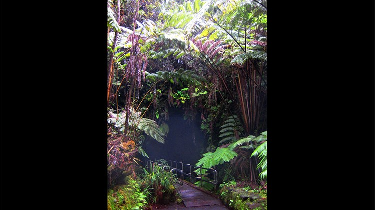A short drive from the national park's main Kilauea visitor center, the 1/3-mile roundtrip hike through native rainforest and Thurston Lava Tube is one of the attraction's most popular short walks.